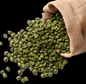 coffee-beans-transp