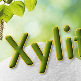 xylit_birkenzucker_6